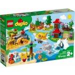 TOP 1. - LEGO DUPLO 10907 Zvířata světa